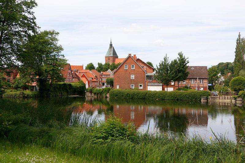 Mehr Mölln Seen  Müll-Sammelaktion für Kunstwerke regionaler Künstler
